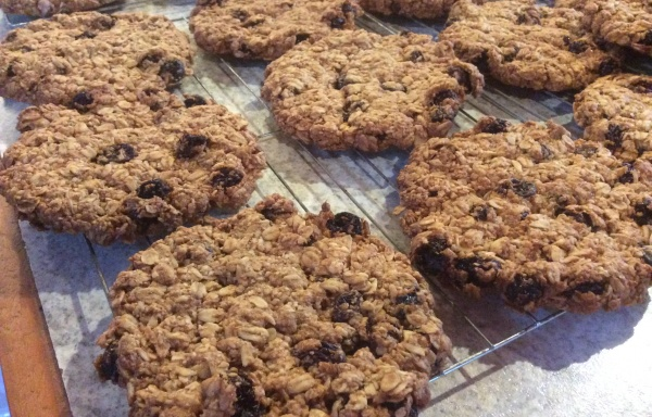 Large Vegan Oatmeal Raisin Cookie